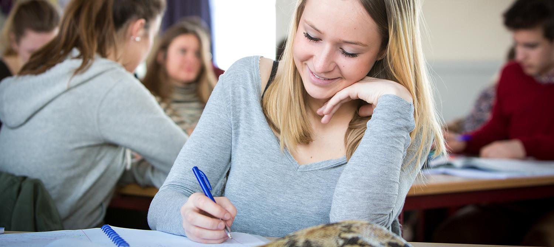 Rebus, non-profit organisatie voor professionele studiebegeleiding en studiecoaching