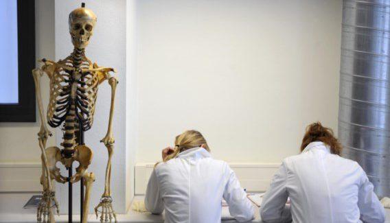 Geneeskunde of tandarts studeren doe je zo